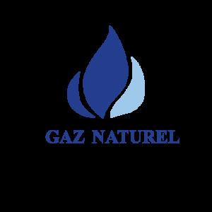 Gaz, Chaudieres, Fournaises, Barbecues au gaz, Feux de foyer| parsplumbing